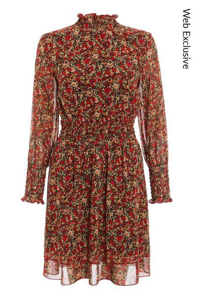 Red Chiffon Floral Skater Dress